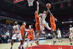 2015 baloncesto del NCAA - templo-Bucknell del NIT primer Rd Fotografía de archivo