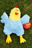 Baloncesto del pollo Foto de archivo