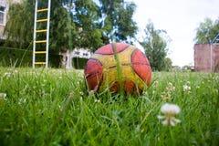 Baloncesto en hierba verde Fotografía de archivo libre de regalías