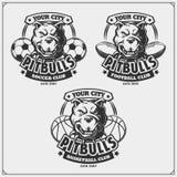 Baloncesto, fútbol y logotipos y etiquetas del fútbol Emblemas del club de deporte con el pitbull Imágenes de archivo libres de regalías