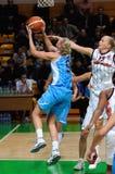 Baloncesto ruso 2009 de las mujeres Imágenes de archivo libres de regalías