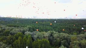 Balones de aire del vuelo sobre los árboles almacen de video