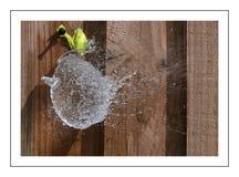 balonowy target1793_0_ Obrazy Royalty Free