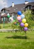 Baloons coloridos del helio en el arbusto enfrente de la casa Foto de archivo