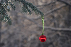 balowa bożych narodzeń lasu zima Obraz Royalty Free