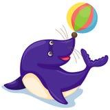 balowa foka Zdjęcie Royalty Free