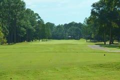 balowego klubu golfowy trójnik Fotografia Stock