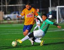 balowego klubu mens dosięgają piłkę nożną Fotografia Stock