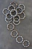 Balowego pelengu tworzenie Obrazy Royalty Free