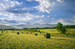 Bals of hay. Bales of hay and clouds Royalty Free Stock Photography