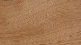 Balsa sheet. Balsa wood texture stock photo
