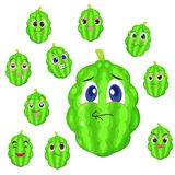 Balsam apple cartoon with many expressions Stock Photo