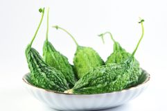 Balsam apple Stock Photo