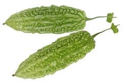 Balsam-Birnen-bittere Melone Lizenzfreie Stockbilder