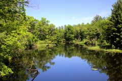 Balsam Flowage. At D. D. Kennedy Environmental Area in Polk County WI Royalty Free Stock Images