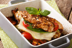 Balsamic chicken fillet baked with mozzarella, basil and tomatoes close-up in a baking dish. horizontal. Balsamic chicken fillet baked with mozzarella, basil and royalty free stock image