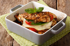 Balsamic chicken stuffed with caprese close-up in a baking dish. Stock Images