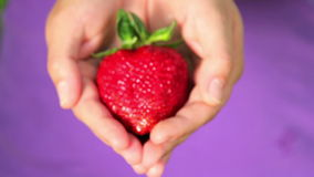 Balshoy, fresh, juicy strawberries in the hands of a person Stock Photography