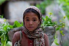 Balti女孩, Ladakh 免版税库存图片