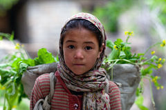 Balti girl, India Royalty Free Stock Images