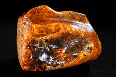Baltic amber. Isolated on black bakground Stock Photos