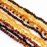 Baltic Amber Necklace. Stock Images