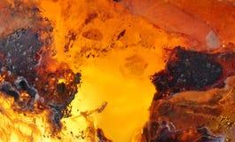 Baltic amber Royalty Free Stock Image