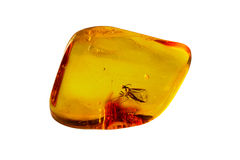 Baltic Amber Stone Stock Photos