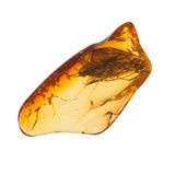 Baltic amber stone. Royalty Free Stock Photography
