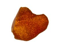 Baltic Amber or Succinite. Chunk of fossilized amber, tree resin from the area around the Baltic Sea Royalty Free Stock Photography