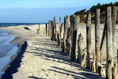 Baltic beach. Wooden poles at Baltic beach, Poland Stock Photos
