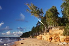 Baltic beach Royalty Free Stock Images