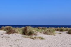 Baltic beach on Fehmarn. Stock Images