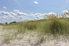 Baltic beach Royalty Free Stock Photos