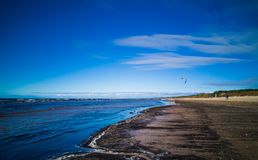 Baltic beach in a sunny cold day with sludge and kiteboarder royalty free stock images