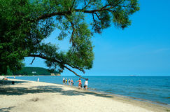 Baltic coast Stock Images