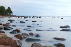 Baltic coast. Stock Photography