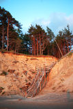 Baltic coast, Latvia. Royalty Free Stock Photos