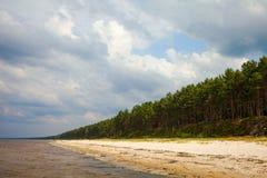 Baltic coast. Royalty Free Stock Photography