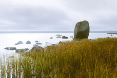 Baltic coast Royalty Free Stock Photography