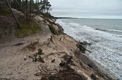 Baltic coast after storm. Baltic coast with eroded beach and landslide after storm Stock Image