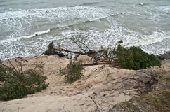Baltic coast after storm. Baltic coast with eroded beach and landslide after storm Stock Photo