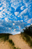 Baltic dunes. Royalty Free Stock Photography