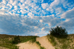 Baltic dunes. Stock Images