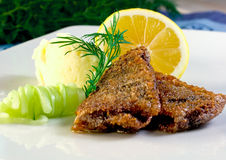 Baltic herring. Some freshly fried baltic herring with potato mash and pickled cucumber Stock Photography