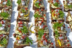 Baltic herring on slices of bread Stock Photos