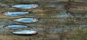 Baltic herring sprats wooden table aged background Stock Photos