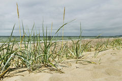 Baltic sea. Royalty Free Stock Photos