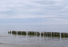 At the Baltic sea. Royalty Free Stock Image