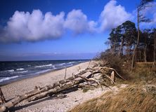 At the Baltic Sea Stock Photo